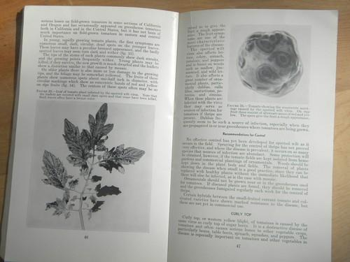 Image Result For Usda Home And Garden Bulletin