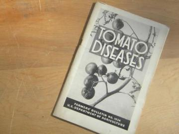 Tomato Diseases with photos, vintage USDA farmers bulletin No 1934