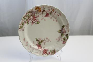 Washington pattern antique transferware, Booths china plate w/ pink multicolor floral