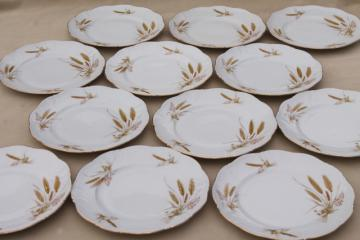 Winterling Bavaria autumn harvest wheat pattern china salad plates, mid-century vintage