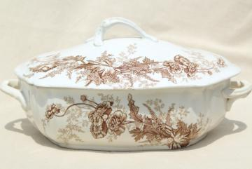 aesthetic vintage ironstone china covered dish, brown transferware poppies