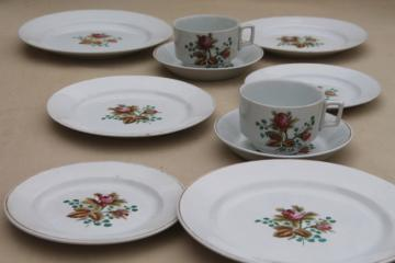 antique 1890s Meakin moss rose ironstone china - plates, cups & deep saucers