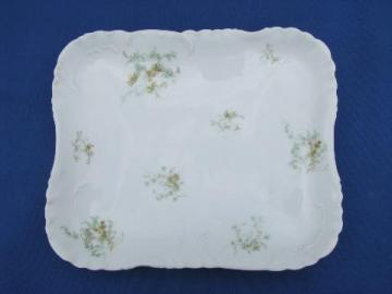 antique 1890s hand-painted china tray, Haviland - Limoges France