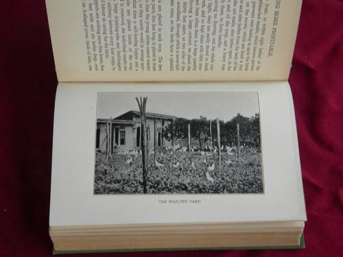Antique 1912 gardening and small scale farming book for Small scale homesteading