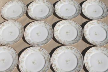 antique Haviland Limoges china dinner or luncheon plates for 12 pink daisy marguerite floral