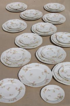 antique Haviland Limoges china plates for 12, complete set luncheon plates, salad, bread plates