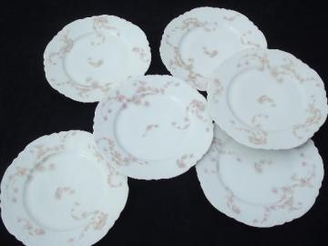 antique Haviland Limoges china plates, pink rose hanging garland floral