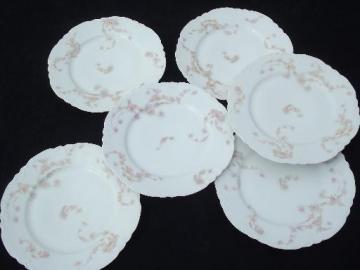 antique Haviland Limoges china plates, pink rose hanging garland floral