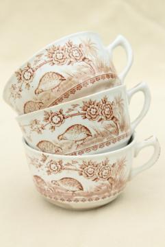 antique Staffordshire china tea cups, Furnivals Quail bird brown transferware