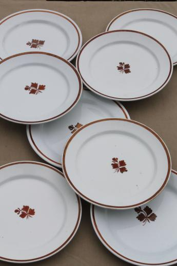 antique Tea Leaf ironstone china plates lot of eight Wedgwood u0026 Alfred Meakin & antique Tea Leaf ironstone china plates lot of eight Wedgwood ...