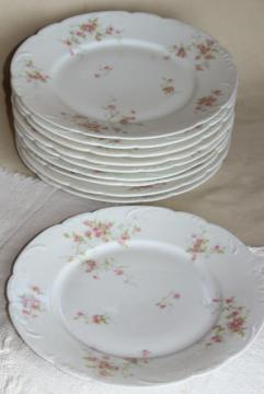 antique Theo Haviland France china dinner plates, embossed shape, pink rose spray
