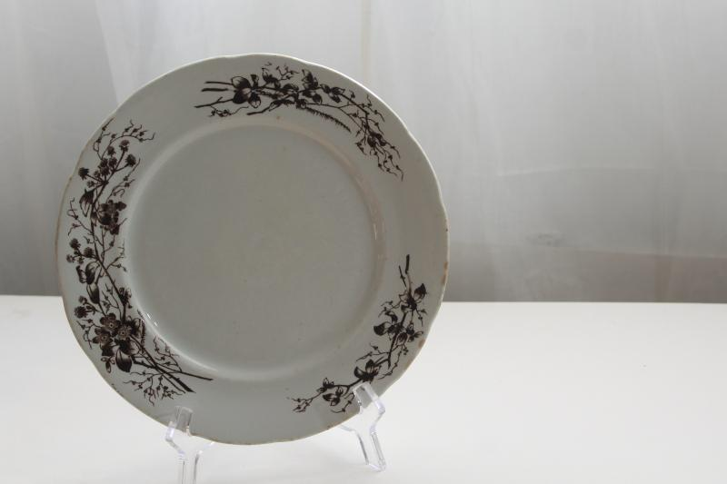 antique Turner's English ironstone china plate, black-brown transferware aesthetic floral