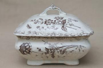 antique brown transferware china, Chelsea aesthetic floral square butter box or cheese keeper