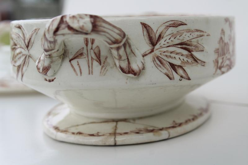 antique brown transferware china covered dish, Indus aesthetic birds botanical pattern