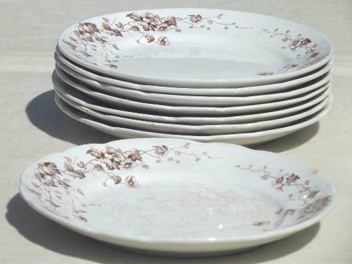 Antique Brown Transferware Plates English Staffordshire & Brown And White Dinnerware - Castrophotos