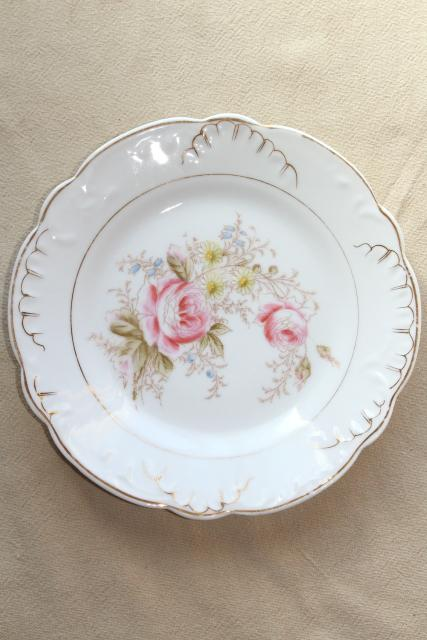antique china w/ hand painted flowers, pretty floral designs - set of 10 salad / dessert plates