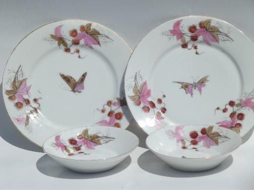 & antique china plates and bowls butterfly moth and horse chestnut art