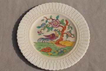 antique creamware china plate Indian tree of life Coalport Kingsware