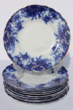 antique flow blue china plates set of 10 unmarked English Staffordshire 1880s? & old u0026 antique china plates u0026 dishes