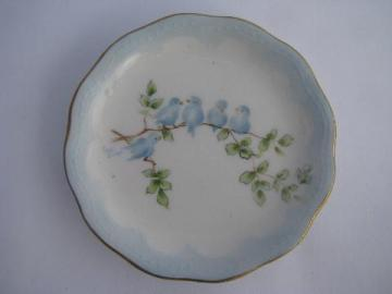 antique hand-painted butter pat plate, family of bluebirds, vintage bluebird china