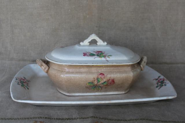 antique moss rose pattern ironstone china covered dish & huge platter, browned patina