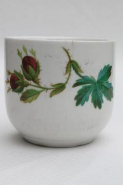 antique mustache cup, old moss rose china Victorian / Edwardian vintage