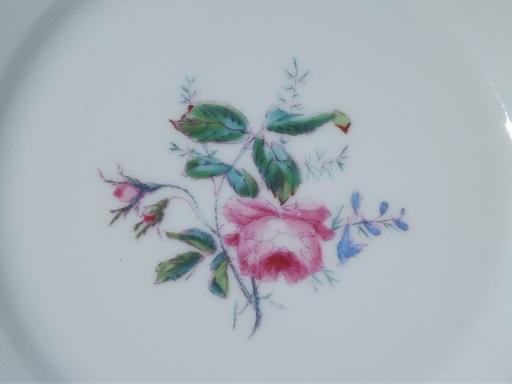 vintage Haviland Limoges china plates, pink moss rose pattern