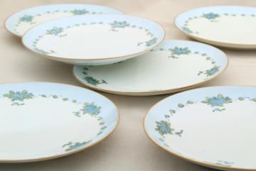 antique vintage MZ Austria porcelain plates, blue forget me not hand painted china