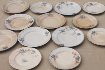 antique vintage bluebird china dishes, one dozen shabby chic cake or dessert plates