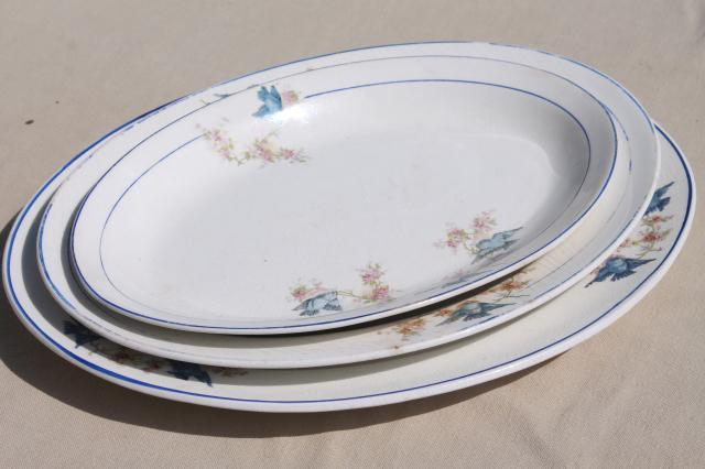 antique vintage bluebird china dishes shabby chic serving platters u0026 plates : shabby chic dinnerware - pezcame.com