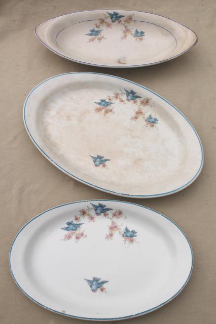 antique vintage bluebird china dishes shabby chic serving platters \u0026 plates & antique vintage bluebird china dishes shabby chic serving platters ...