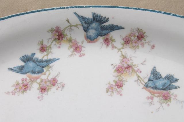 antique vintage bluebird china dishes, shabby chic serving platters & plates