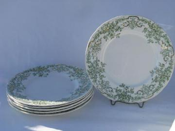 antique vintage green transferware china plates, Stratford - Alfred Meakin - England