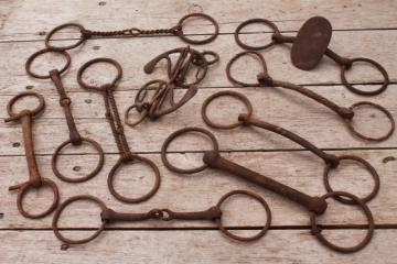antique vintage horse bits, snaffle bits - rusty old tack for primitive rustic display