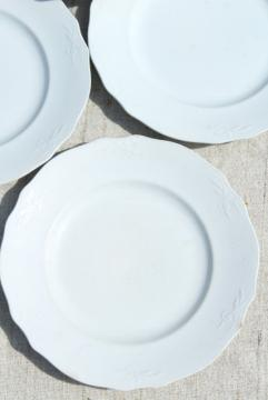 antique vintage white ironstone china plates, Alfred Meakin embossed wheat