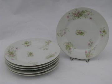 antique violet floral French china plates set of six, vintage AH & Co France china