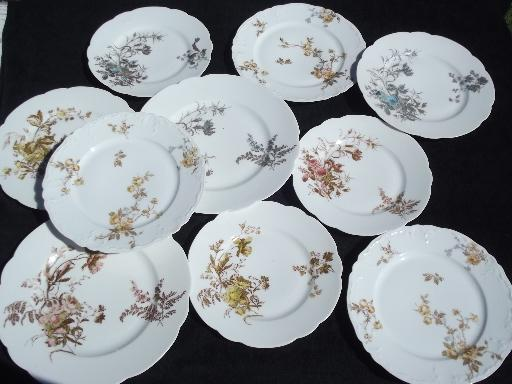 & assorted antique Haviland Limoges china plates lot fall floral patterns