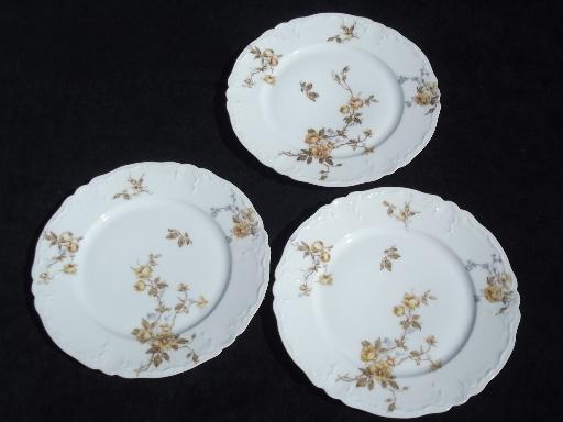 antique Haviland Limoges china plates, lot fall floral patterns
