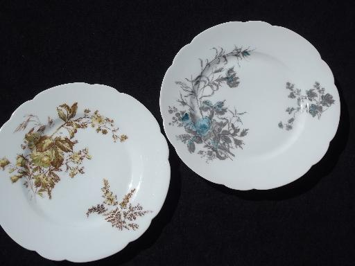 Assorted Antique Haviland Limoges China Plates Lot Fall