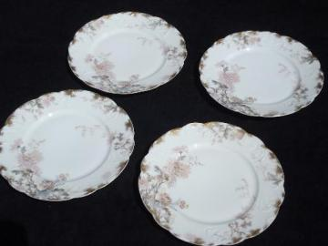 autumn asters floral antique Haviland Limoges french china salad plates