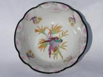 big porcelain bowl w/ painted parrot, antique German china, vintage Germany