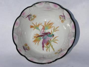 big porcelain bowl w/ painted parrot, antique German china, vintage Germany