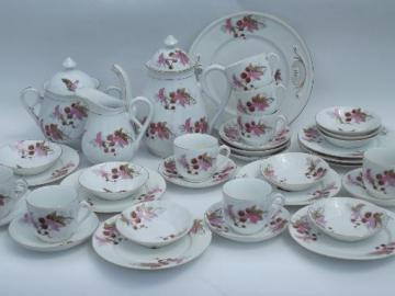 butterfly moth and horse chestnut art nouveau vintage china tea set for 8