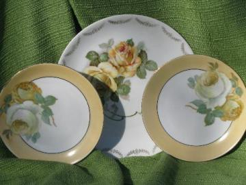 early 1900s antique Bavaria china plates lot, full blown yellow roses