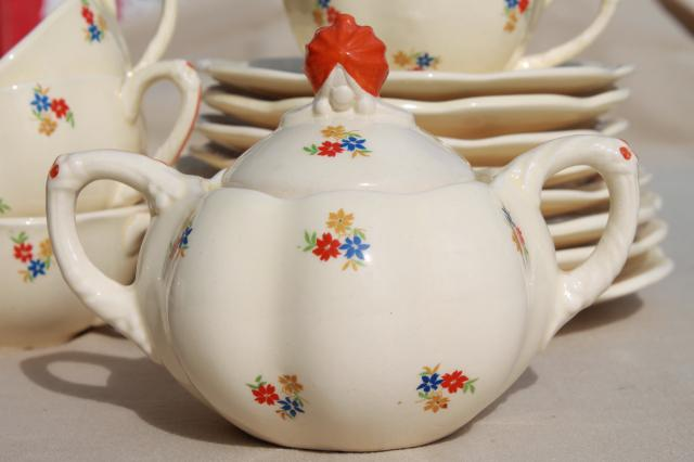 Flowered Sprig Cottage Style Vintage Tea Set Ditmar