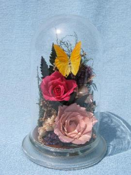 flowers & butterfly, glass dome cover natural history display mount