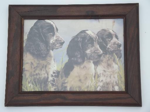 Framed Vintage Prints Of Bird Hunting Gun Dogs For Lodge