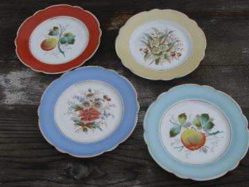 fruit and flowers, antique hand-painted china plates w/ colored borders