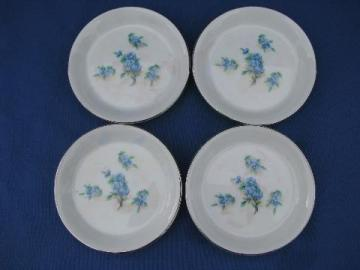 hand-painted forget-me-nots, vintage Japan fine china coasters set