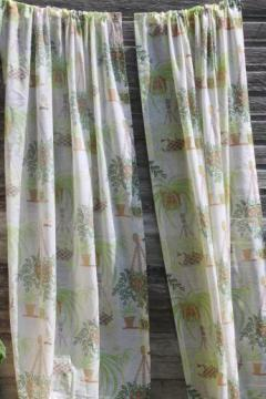 hippie vintage gauzy window curtains w/ spider plants houseplant print